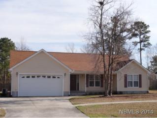 110  Farina Drive  , Havelock, NC 28532 (MLS #96675) :: First Carolina, REALTORS®