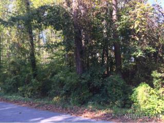 210  West Palmer Drive  N/A, New Bern, NC 28560 (MLS #96720) :: First Carolina, REALTORS®