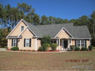 210  Sea Bisquit Dr  , Havelock, NC 28532 (MLS #97079) :: First Carolina, REALTORS®