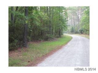 n/a  Creek Pointe Road  20, New Bern, NC 28560 (MLS #97138) :: First Carolina, REALTORS®