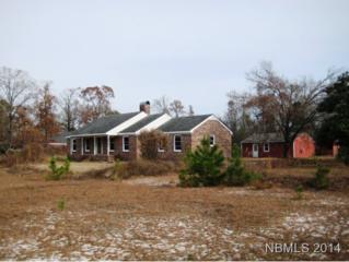 140  Croatan Ln  , New Bern, NC 28562 (MLS #97213) :: First Carolina, REALTORS®
