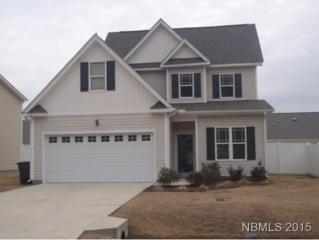 414  Peregrine Ridge Drive  , New Bern, NC 28560 (MLS #98003) :: First Carolina, REALTORS®