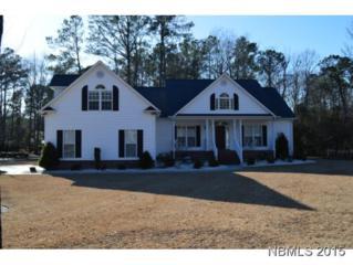 1700  Pennyroyal Rd  , New Bern, NC 28562 (MLS #98366) :: First Carolina, REALTORS®