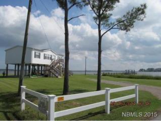 2143  Canady Landing Rd  , Aurora, NC 27806 (MLS #98586) :: First Carolina, REALTORS®