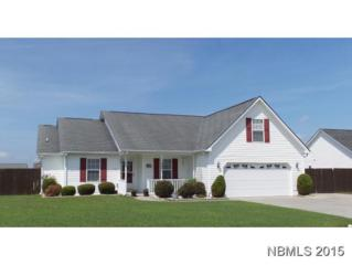 1115  Litewood Ct  , Havelock, NC 28532 (MLS #98606) :: First Carolina, REALTORS®