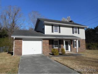100  Bridle Lane  , Havelock, NC 28532 (MLS #98761) :: First Carolina, REALTORS®