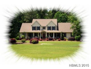 121  Wildflower Way  , Pollocksville, NC 28573 (MLS #99485) :: Donna & Team New Bern