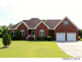 910  Temples Point Road  , Havelock, NC 28532 (MLS #99488) :: Donna & Team New Bern