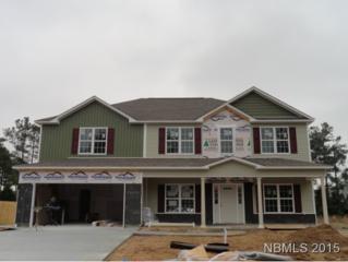 113  Eli's Landing Lane  , Newport, NC 28570 (MLS #94486) :: First Carolina, REALTORS®