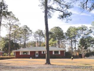 2124  South Lakeview Dr  , Newport, NC 28570 (MLS #98342) :: First Carolina, REALTORS®