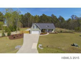 107  Aspen Ct  , Havelock, NC 28532 (MLS #98860) :: First Carolina, REALTORS®