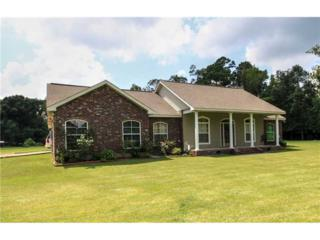 24373  Stepp Rd  , Ponchatoula, LA 70454 (MLS #1001457) :: Turner Real Estate Group