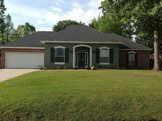 468  Red Maple Dr  , Mandeville, LA 70448 (MLS #1006415) :: Turner Real Estate Group