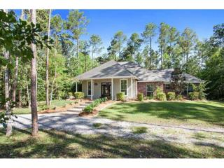 23123  Nelita Rd  , Mandeville, LA 70471 (MLS #1009576) :: Turner Real Estate Group