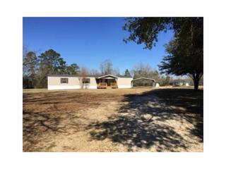 22495  Maurice Taylor Rd  , Bush, LA 70431 (MLS #1018894) :: Turner Real Estate Group