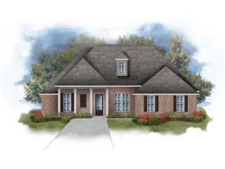 205  Autumn Woods Drive  , Covington, LA 70433 (MLS #1020564) :: Turner Real Estate Group