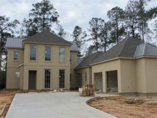 20  Briar Hollow Drive  , Covington, LA 70433 (MLS #2002942) :: Turner Real Estate Group