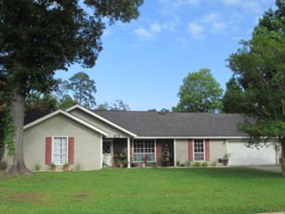 517  Barbara Place  , Mandeville, LA 70448 (MLS #2012410) :: Turner Real Estate Group