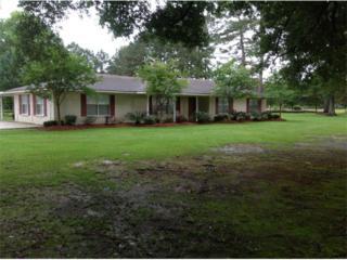59855  Dykes Lane  , Amite, LA 70422 (MLS #2012465) :: Turner Real Estate Group