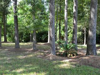 AUDUBON  Ln  , Mandeville, LA 70471 (MLS #1003136) :: Turner Real Estate Group