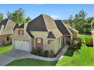 223  Bee Balm Cr  , Covington, LA 70435 (MLS #1009423) :: Turner Real Estate Group