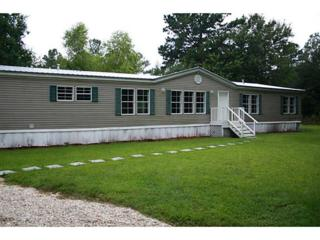 22032  Lowe Davis Rd  , Covington, LA 70435 (MLS #998106) :: Turner Real Estate Group