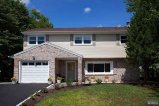 92  White Beeches Dr  , Dumont, NJ 07628 (#1431739) :: Fortunato Campesi - Re/Max Real Estate Limited
