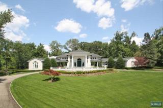 , Alpine, NJ 07620 (#1433928) :: Fortunato Campesi - Re/Max Real Estate Limited