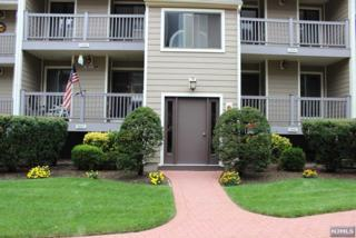 208  River Renaissance  208, East Rutherford, NJ 07073 (#1437489) :: Fortunato Campesi - Re/Max Real Estate Limited