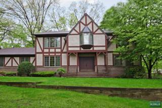 424  Margiasso Ct  , River Vale, NJ 07675 (#1439188) :: Fortunato Campesi - Re/Max Real Estate Limited