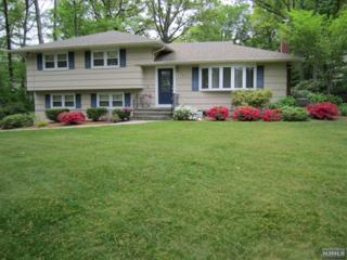 573  Green Ln  , River Vale, NJ 07675 (#1440021) :: Fortunato Campesi - Re/Max Real Estate Limited