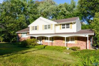 85  Chestnut Ave  , Park Ridge, NJ 07656 (#1442222) :: Fortunato Campesi