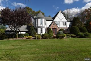 9  Old English Ct  , Woodcliff Lake, NJ 07677 (#1502327) :: Fortunato Campesi