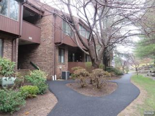 224  Indian Hollow Ct  , Mahwah, NJ 07430 (#1512610) :: Group BK