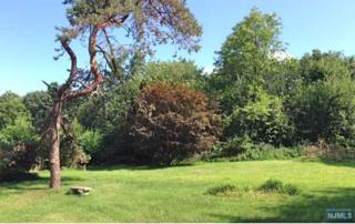 589  Summit Ave  , Franklin Lakes, NJ 07417 (#1514930) :: Fortunato Campesi