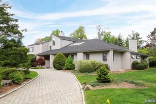 47  Glen Goin Dr  , Alpine, NJ 07620 (#1519057) :: Fortunato Campesi