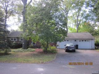 65  Belmar St  , Demarest, NJ 07627 (#1436211) :: Fortunato Campesi - Re/Max Real Estate Limited