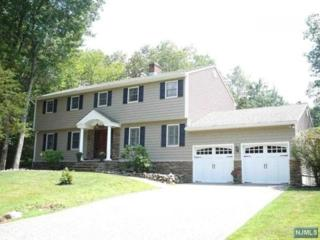 2  Seminole Dr  , Ringwood, NJ 07456 (#1443821) :: The Chopper Russo Group