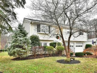 207  Randolph Ave  , Emerson, NJ 07630 (#1444037) :: Fortunato Campesi - Re/Max Real Estate Limited