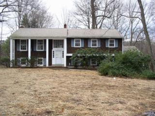 , Franklin Lakes, NJ 07417 (#1445418) :: Fortunato Campesi - Re/Max Real Estate Limited