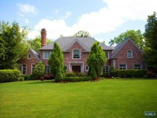 5  Birch Rd  , Alpine, NJ 07620 (#1510944) :: Fortunato Campesi