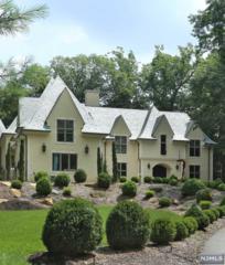, Alpine, NJ 07620 (#1404711) :: Fortunato Campesi - Re/Max Real Estate Limited