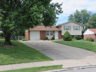 120  Honeysuckle Dr  , Florence, KY 41042 (MLS #435853) :: Apex Realty Group