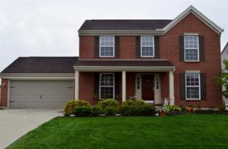 301  University Dr  , Walton, KY 41094 (MLS #437068) :: Apex Realty Group