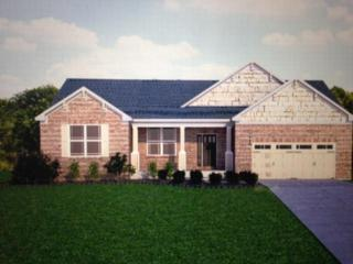 15841  Glencoe Verona Rd  , Verona, KY 41092 (MLS #437290) :: Apex Realty Group