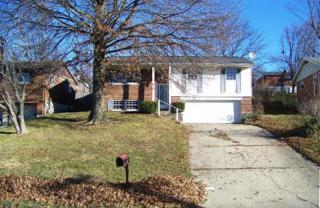 616  Stevenson Rd  , Erlanger, KY 41018 (MLS #438358) :: Apex Realty Group