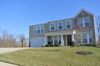 1014  Cherryknoll Ct  , Independence, KY 41051 (MLS #439521) :: Apex Realty Group