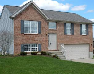10421  Sharpsburg Dr  , Independence, KY 41051 (MLS #440236) :: Apex Realty Group