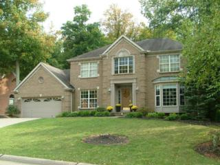 1897  Grovepointe Dr  , Florence, KY 41042 (MLS #438322) :: Apex Realty Group