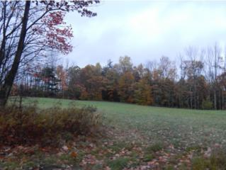 Lot 5  Upper City Road  , Pittsfield, NH 03263 (MLS #4394448) :: Keller Williams Coastal Realty